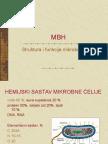 2 MBHcelijskizidovi