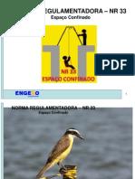 NR33.pdf