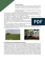 Actividades económicas del estado Cojedes.docx