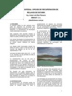 Proyecto Bofedal