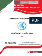 Lineamientos para la Simulación por FEN 2015 (1).docx