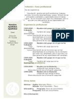 curriculum-vitae-modelo3a-verde