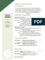 curriculum-vitae-modelo3b-verde