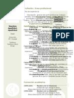 curriculum-vitae-modelo3c-verde