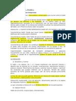 RESUMEN SEMINARIO I.docx