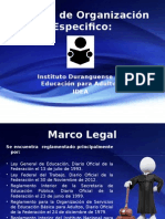 Manual de Organización Especifico
