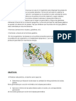 Lipasa Pancreatica