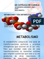 Metabolismo y via Metabolica Grupo No.1