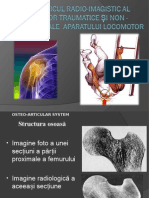 Prelegere Osteoarticular Rom