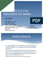 SEMINARIO MAMOGRAFÍA
