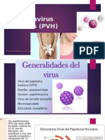 Cáncer de Cérvix Incidencia y Mortalidad