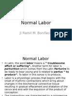 Normal Labor
