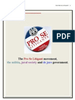 The Pro Se Litigant