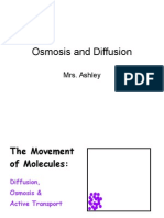 06 Diffusion Osmosis Lecture PowerPoint VCBCct
