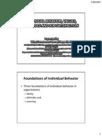 Invidual Behaviour