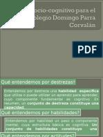 Modelo Sociocognitivo Para El Colegio Domingo Parra Corvalán 2015 2 Semestre