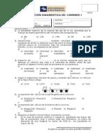 01 Evaluación Diagnóstica - Caminos i