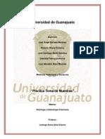 Practica Toma de Muestra.pdf