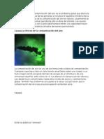 Introducción.docxcontaminacion