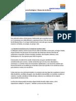 Costanera Sur | Reserva Ecológica Buenos Aires | Paseo de la Gloria