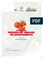 Tomate de Invernadero Colombia
