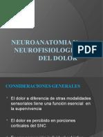 Neuroanatomia y Neurofisiologia Del Dolor