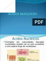 acido nucle10