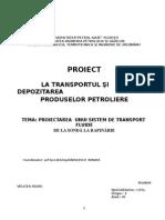 Proiect Transport
