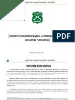 INFORME_ESTADISTICO Robo a Casas.pdf