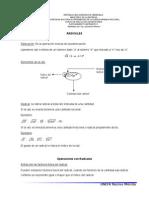 _GuíadeRadicales.doc_.doc
