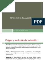 Tipologias Familiares