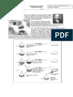 EVIDENCIAS DEL ADN.pdf