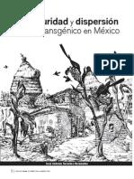 Bioseguridad y dispersión de maíz transgénico en México 2009