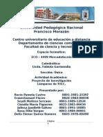 Informe de Mercadotecnia. 2015docx-f