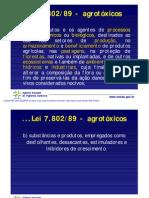 Pedro_Serafim_RESUMO Programa PARA 2009