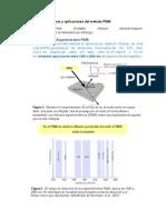 Espectrometria de PIMA