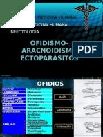 ofidismo aracnoidismo ectoparasitos