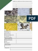 Formato de Identificacion de Microestructura