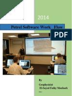 Petrel Software Work Flow Part 1