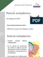 presentacion retículo endoplásmico