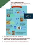 fossilstations