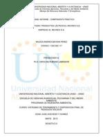 Actividad Informe - Componente Práctico