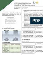 Formato Preinforme Prelfa 1 Wab