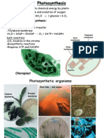 15 Photosynthesis 2014-15