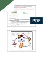12_Amino Acid Metabolism (2014m)