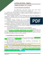 LEI MARIA DA PENHA - Rogério - LIDA.docx