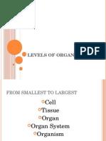 levels of organizationnotes
