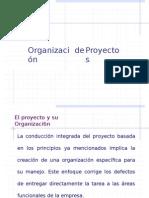 Organizacion Del Proyecto