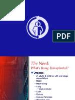 What's Being Transplanted Sawiji 2015