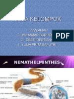 TUGAS NELMATEMINTHES